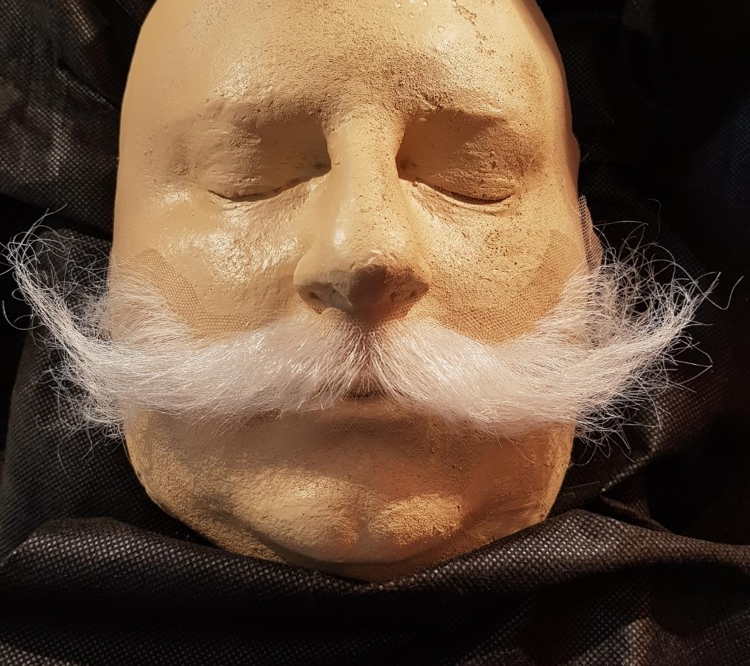 Perucas, barbas, bigodes, testas, orelhas, narizes, próteses de machucados, produtos específicos de maquiagem de efeitos
